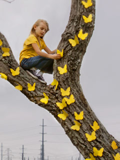 girl hanging butterfies in a tree